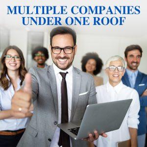 Managing Multiple Businesses