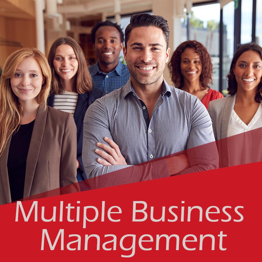 Multiple Businesses