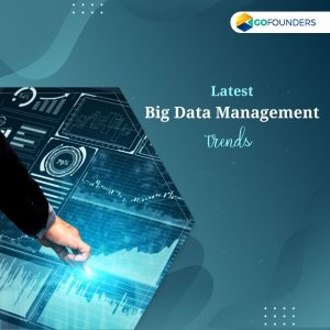 GoFounders Big Data Management